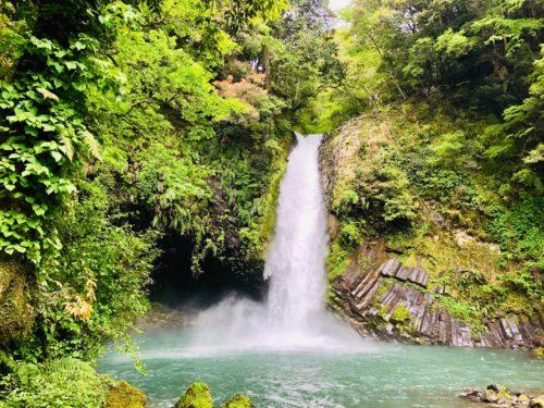 浄蓮の滝|わさびと釣りも楽しめるマイナスイオン全開スポット!
