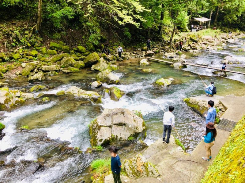 浄蓮の滝で釣り
