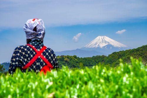 富士山ビューポイント|静岡県伊豆の国市のおすすめスポット7選!