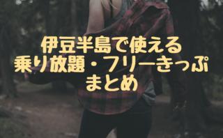 【2019年】伊豆半島の鉄道・バス・フェリー乗り放題きっぷまとめ