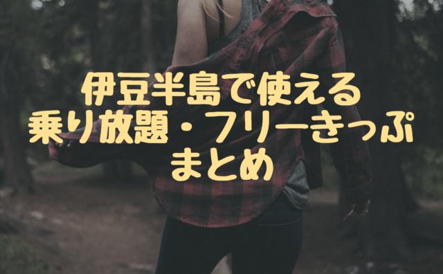 【2019年】伊豆観光バス・電車・フェリー乗り放題きっぷまとめ!